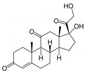 kortizon-nedir